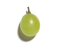 Wyciąg z winogron